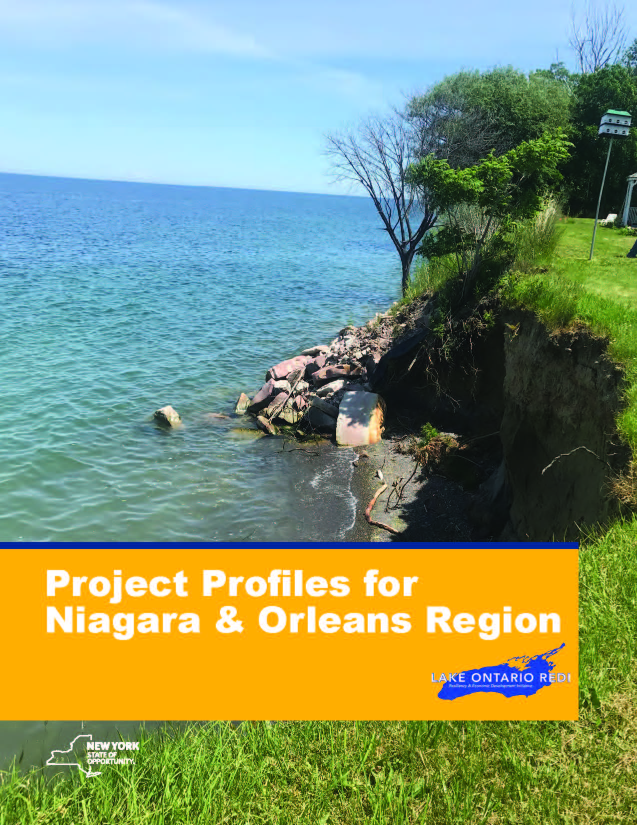 Lake Ontario REDI Projects Receive Tens of Millions in Funding